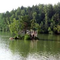 купание на Алтае