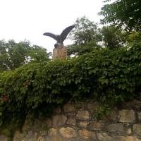 Железноводск, Бештау санаторий 30 лет Победы, Орел на выходе к декоративному озеру