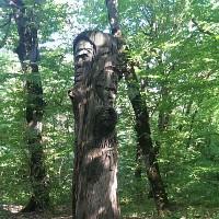 Остатки указателей, медь сдали, мрамор растащили, и только дерево кое-где осталось.